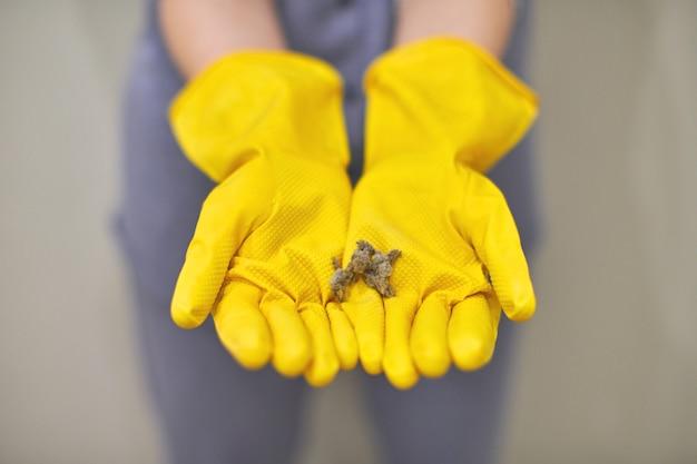 Bolas de poeira, fiapos e fiapos em mãos humanas
