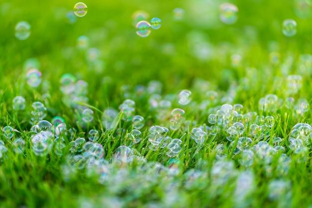 Bolhas de sabão na grama verde. diversão dia de verão