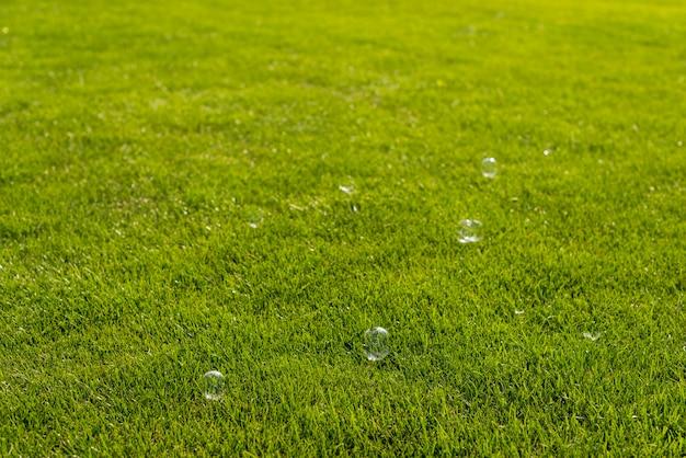 Bolhas de sabão na natureza