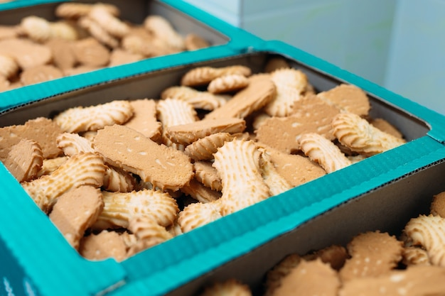 Bolinhos de shortbread embalados em caixas.