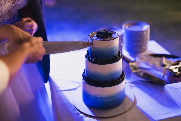 Bolo de casamento azul lindo com mirtilo