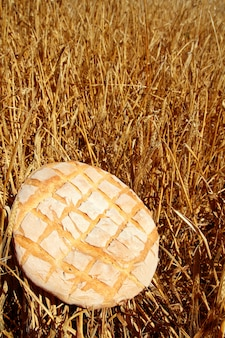 Bolo de pão redondo na palha de trigo dourado