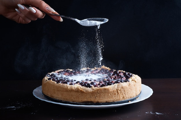 Bolo de torta de frutas vermelhas com groselha de cerejas em uma tigela com um polvilhe quente fresco e quente com açúcar de confeiteiro