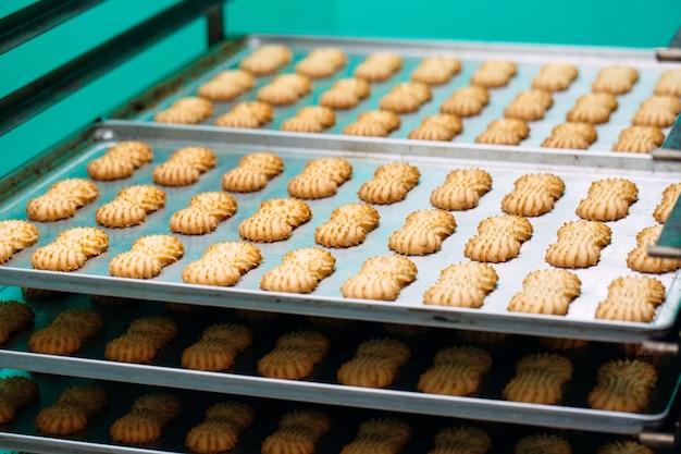 Bolo seco friável. produção de biscoitos amanteigados em uma fábrica de confeitaria. bolinhos de shortbread em uma cremalheira do metal após o cozimento no forno.