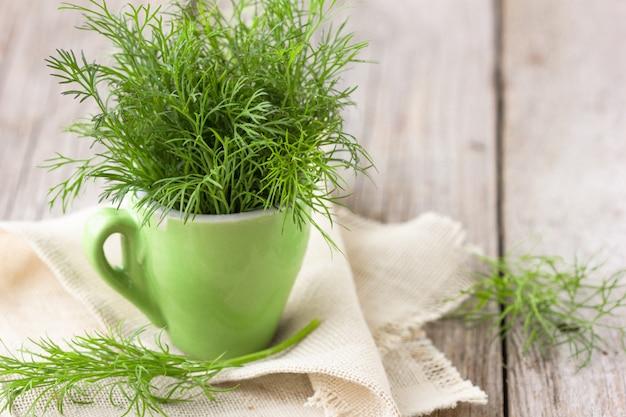 Bom endro orgânico verde no jardim de agricultores para alimentos
