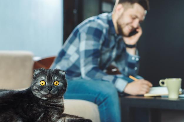Bom gato preto na frente do jovem freelancer feliz espiando no telefone enquanto trabalha em casa