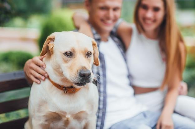 Bom menino! lindo casal descansando no banco com o cachorro. família jovem acariciando labrador. concentre-se no cachorro.