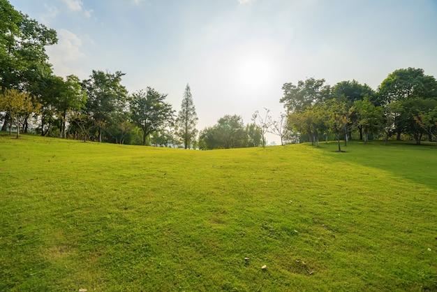 Bom tempo e gramado no parque