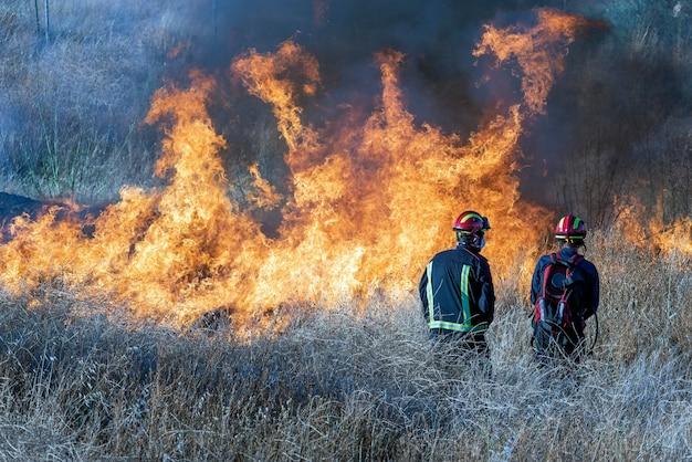 Bombeiros tentando apagar um incêndio florestal