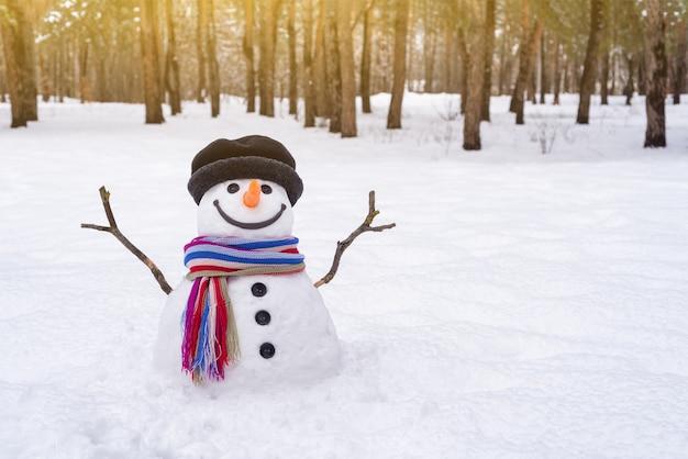 Boneco de neve com um lenço listrado em um parque da cidade. cena de inverno com espaço de cópia para texto