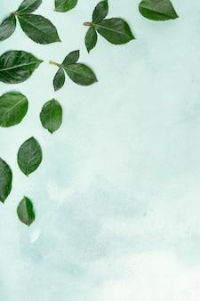 Bonito arranjo de folhas com espaço de cópia
