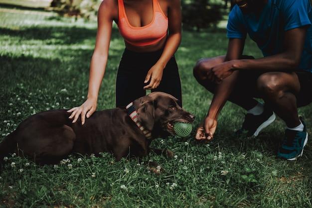 Bonito, homem preto, andar, cachorro marrom, parque