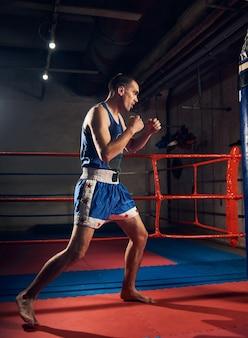 Bonito kick boxer treinando chutes e socos em um saco de boxe
