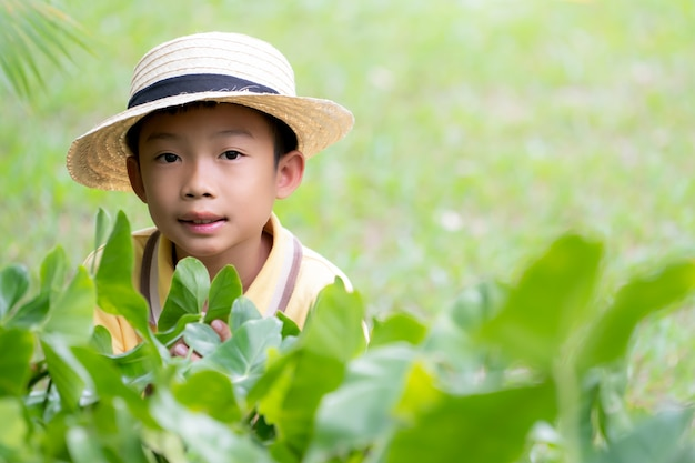 Bonito, menino asiático, criança, desgastar, chapéu, ligado, parque natureza