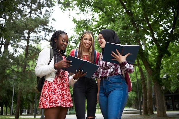 Bons amigos discutindo palestras em um parque universitário
