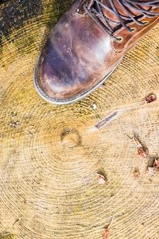 Boot on textura de madeira com anéis de árvores