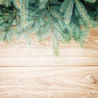 Borda de árvore do abeto azul em fundo de madeira