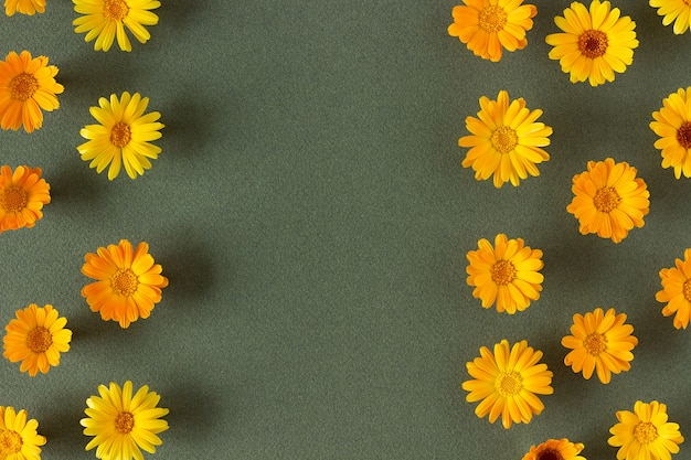 Borda de flores naturais de laranja de calêndula em fundo verde
