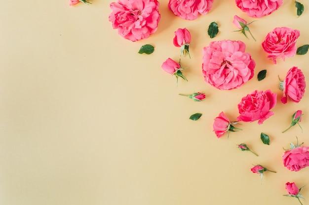 Borda de flores rosa rosa em amarelo
