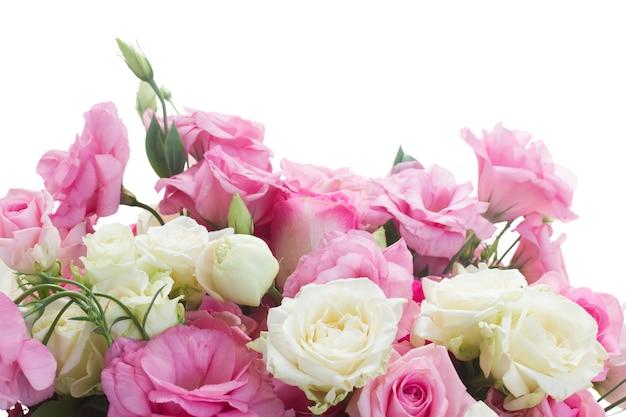 Borda de rosas frescas brancas e rosa e flores de eustoma isoladas