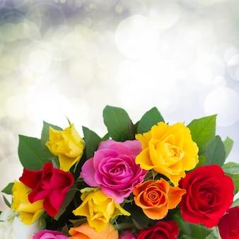Borda de rosas frescas rosa, amarelo, laranja e vermelho em bokeh cinza