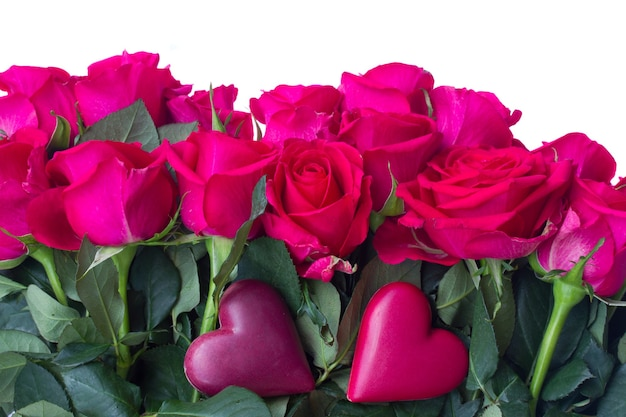 Borda de rosas rosa escuras com dois corações isolados no fundo branco