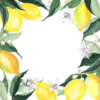 Borda de vegetação em aquarela com limões e flores