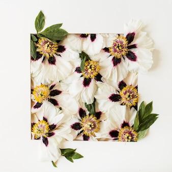 Borda do quadro de botões de flores de peônias em amarelo