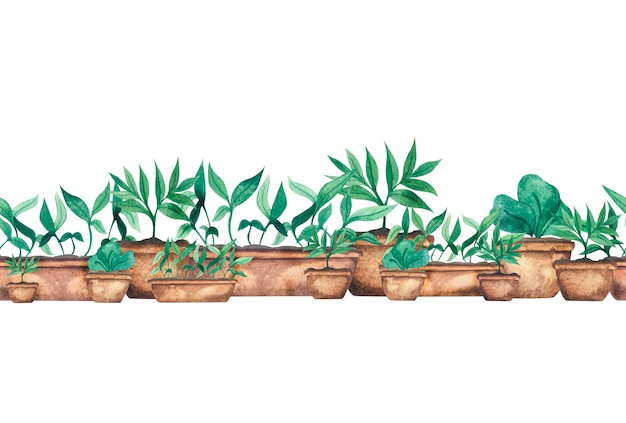 Borda em aquarela com mudas verdes em vasos de mudas para cultivo em estufa