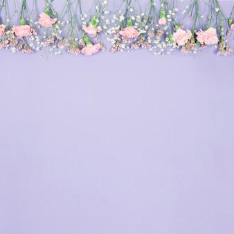 Borda superior decorada com limonium; gypsophila e flores de cravos em pano de fundo roxo