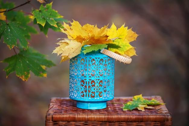 Bordo de outono maple folhas em vaso