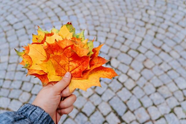 Bordo de outono parte na mão da mulher