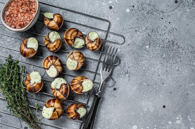 Borgonha escargot caracóis com manteiga de alho na grelha. plano de fundo cinza. vista do topo. copie o espaço.