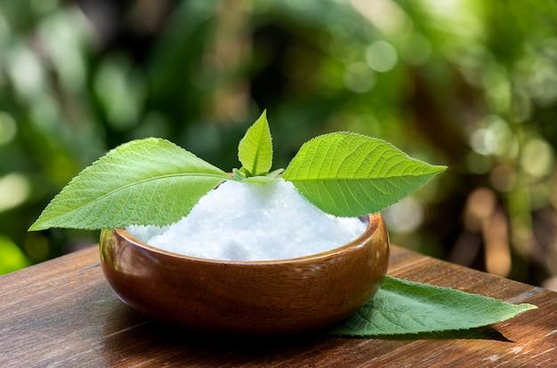 Borneolum syntheticum, cristal branco e árvore de cânfora ngai, folhas verdes na natureza.