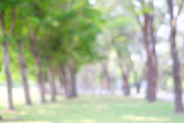 Borrão parque com bokeh de fundo claro