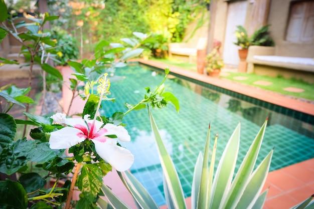 Borrão vista frontal para hotel resort vintage, conceito verão