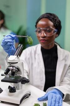 Botânico colhendo amostra de folha de placa de petri e descobrindo mutação genética biológica