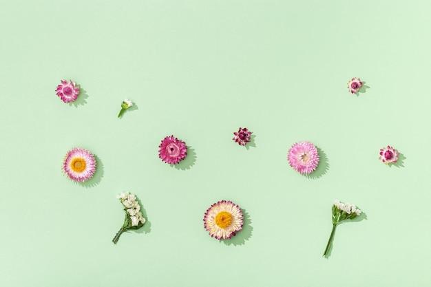 Botão de close-up de flores coloridas secas, pequenas flores em verde.
