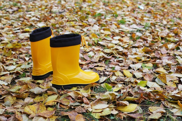 Botas de borracha amarelas brilhantes nas folhas de outono
