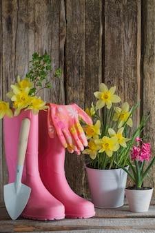 Botas de borracha e flores da primavera em fundo de madeira