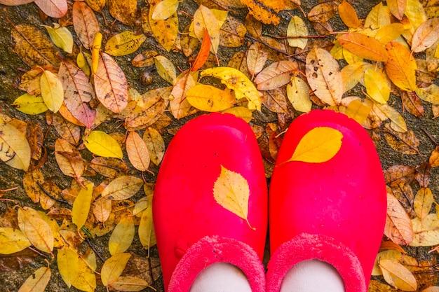 Botas de borracha vermelha brilhante durante uma caminhada enlameada