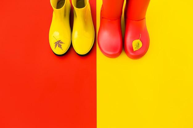 Botas de chuva das mulheres brilhantes com folhas voadas nas pontas.