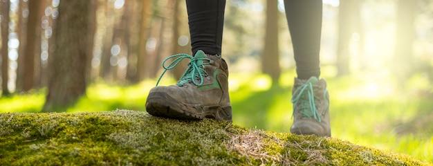Botas fecham caminhando pela floresta na natureza
