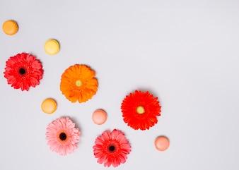Botões de flores com biscoitos na mesa