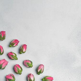 Botões de flores de cravo com espaço de cópia