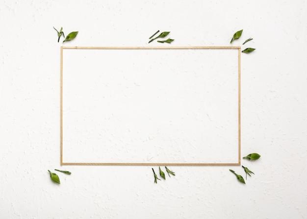 Botões de flores de cravo em torno de um quadro horizontal vazio