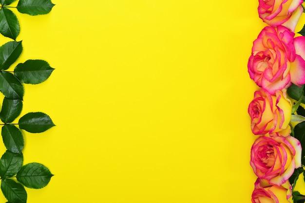 Botões de rosas amarelas e folhas verdes