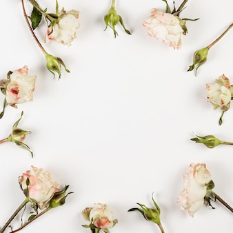 Botões de rosas brancas e espaço de cópia