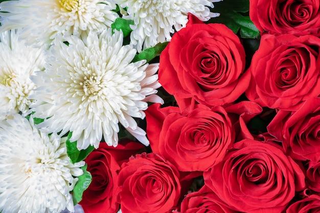 Botões de rosas vermelhas e close-up de crisântemos brancos. floral festivo brilhante.
