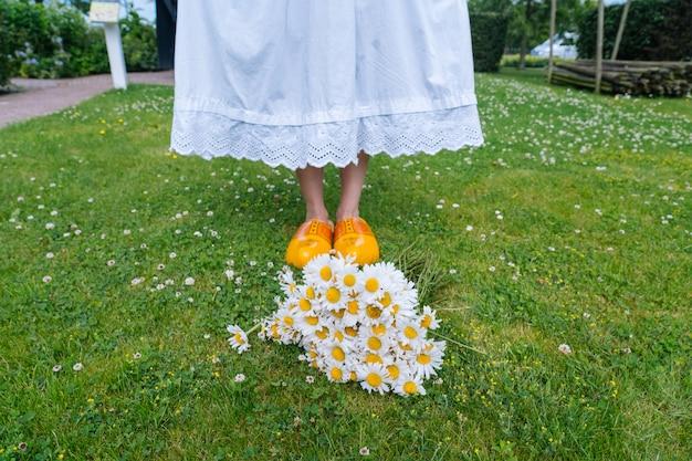 Bouquet lindas margaridas brancas no jardim de verão